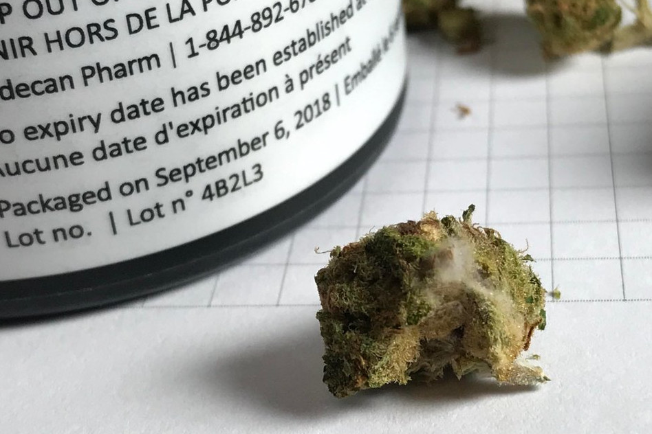 Mouldy weed recall from Ontario expanded to B.C.