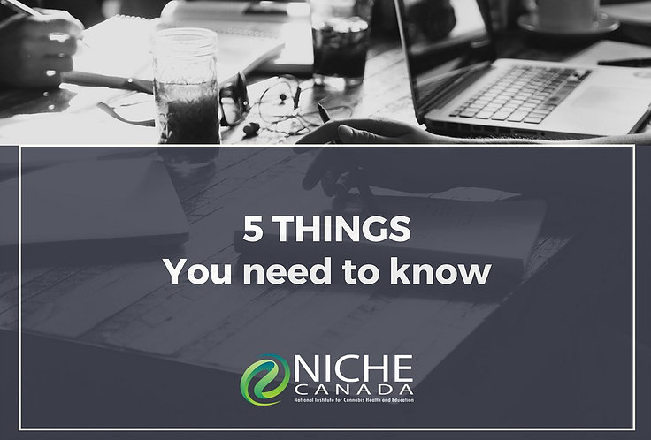 NICHE this Week: 5 Things You Need to Know